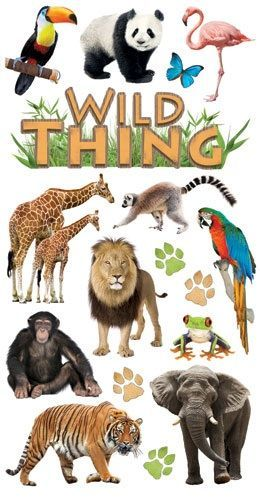 Wild Thing Rub ons