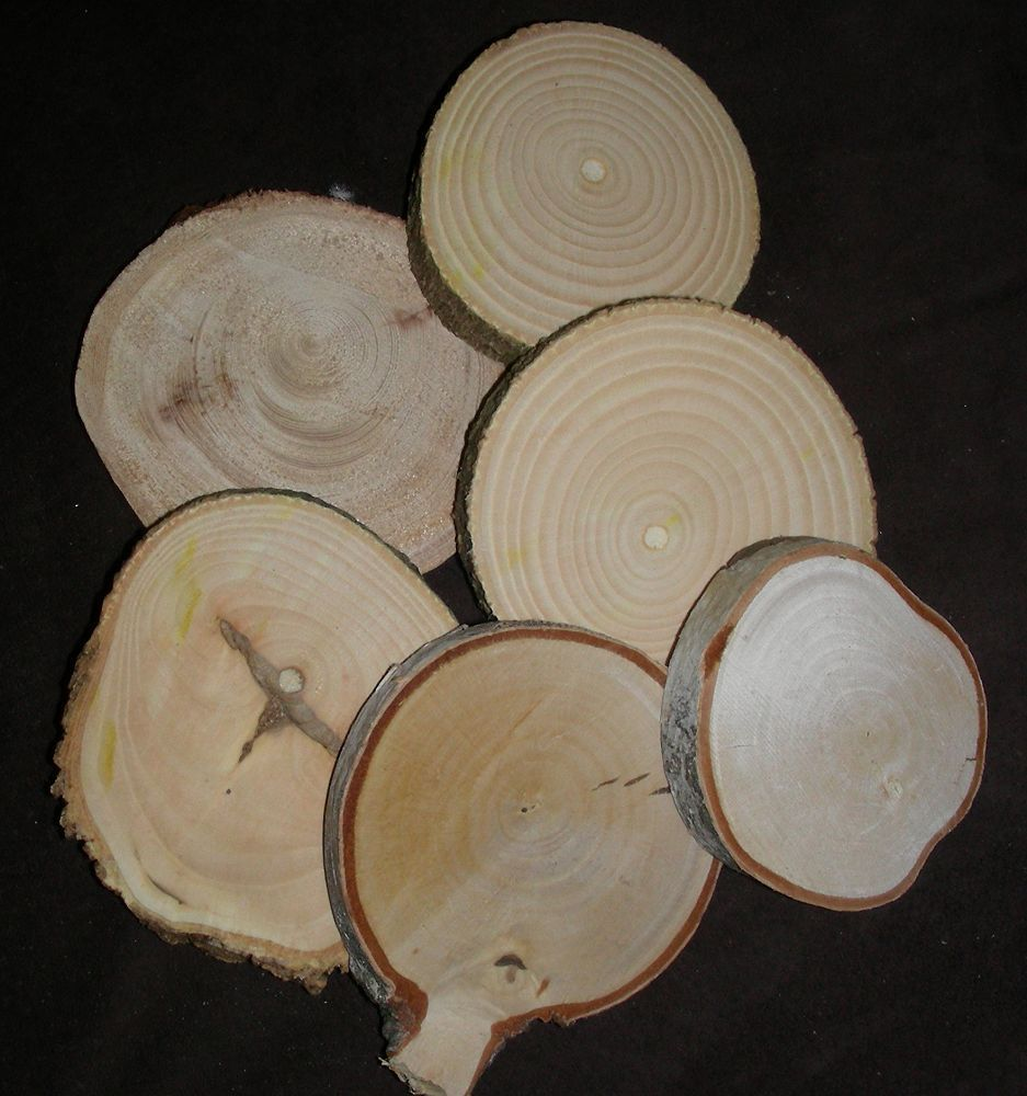 "Wood Rounds 2"" - 3"""