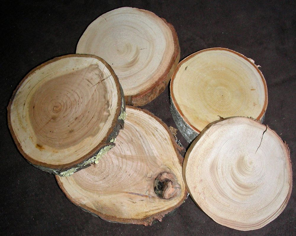 "Wood Rounds 3""-4"""