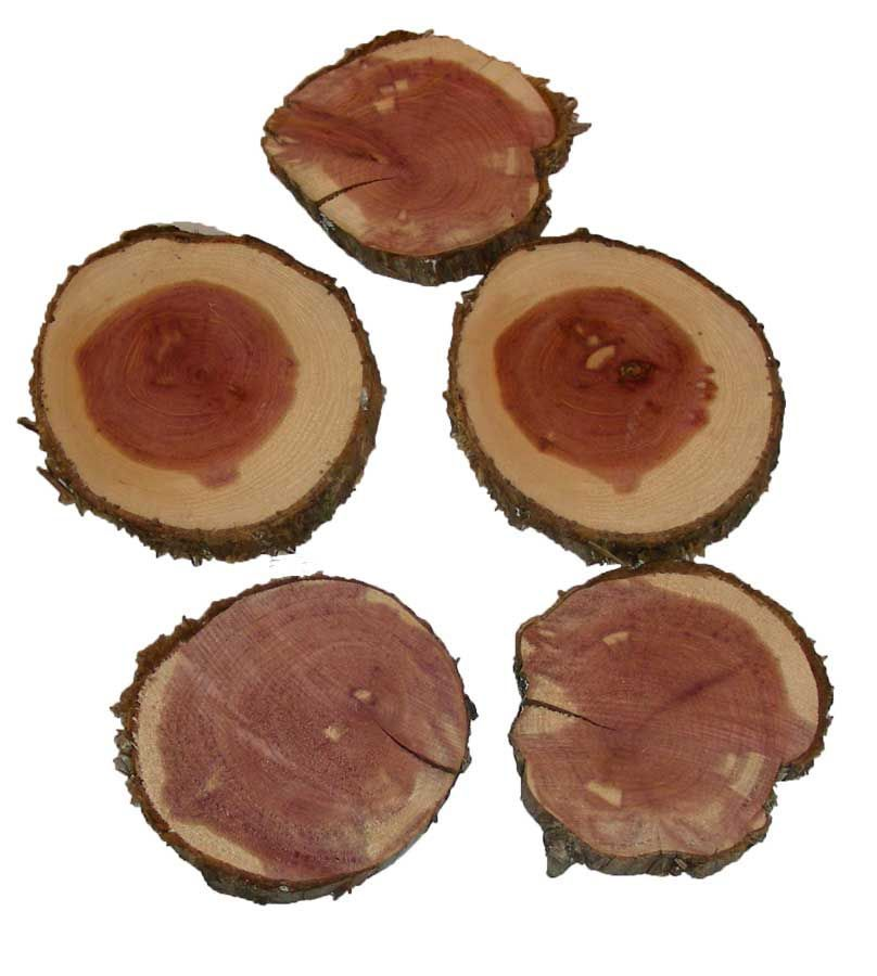 "Woods Rounds Eastern Cedar 3"" - 4"""
