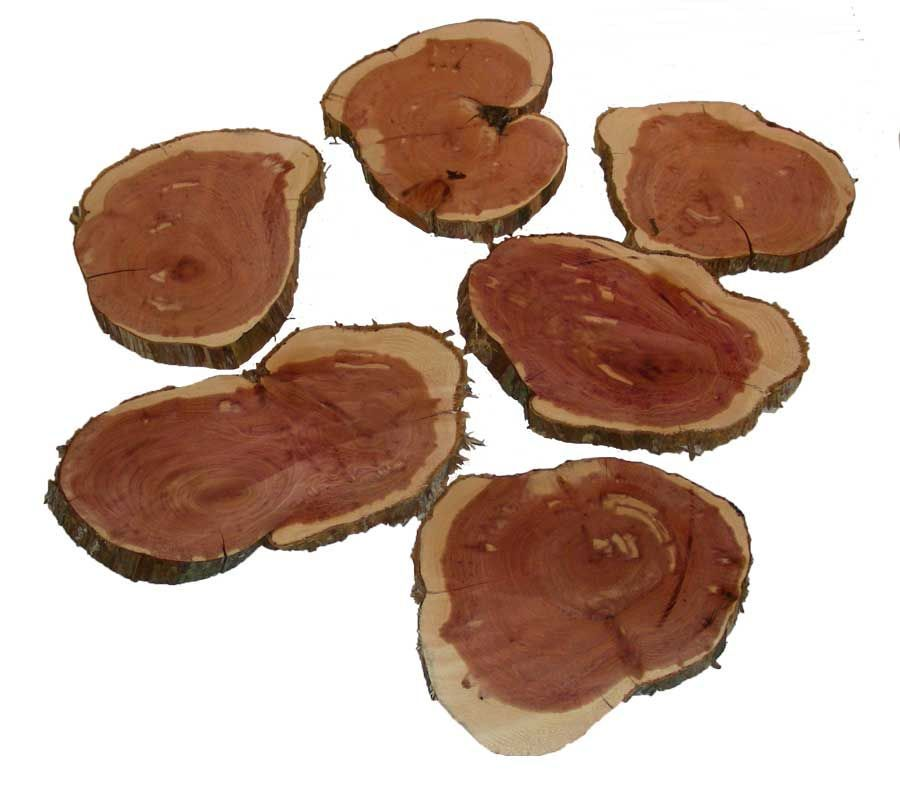 "Wood Rounds Eastern Cedar 6"" - 7"""