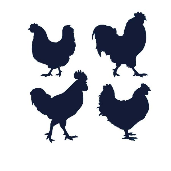 Vinyl Chickens Large