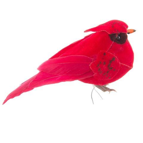 """cardinal 4.25"""""""