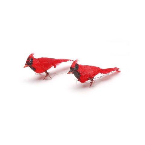 """Cardinal 2"""""""