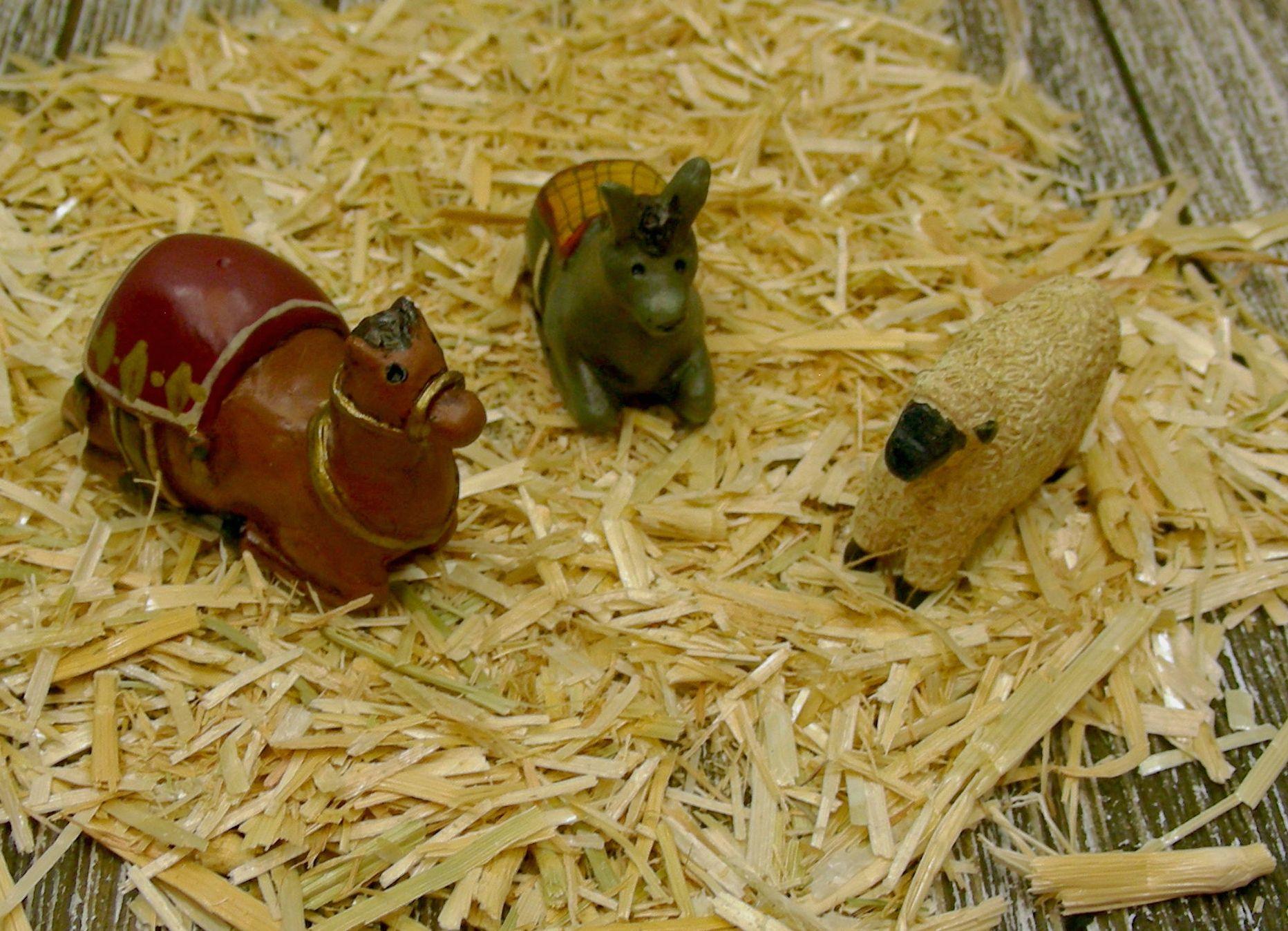 Nativitiy Animals