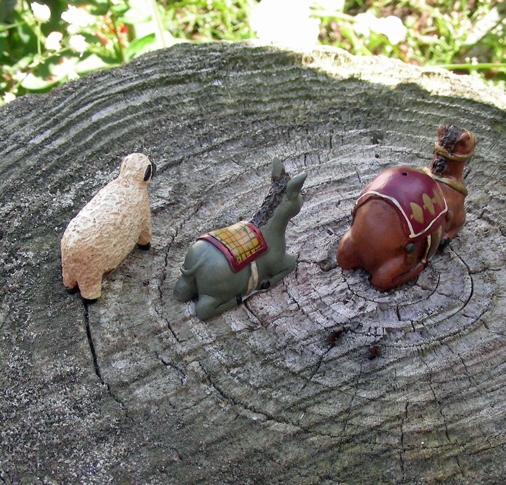 Nativity animals
