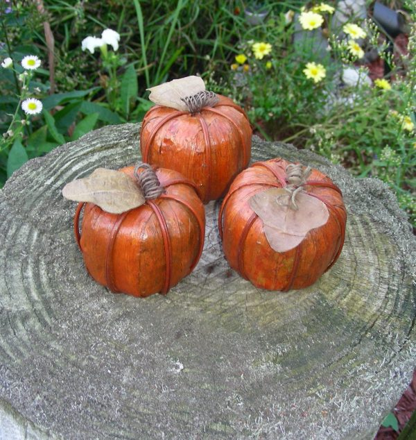 Pumpkin, country