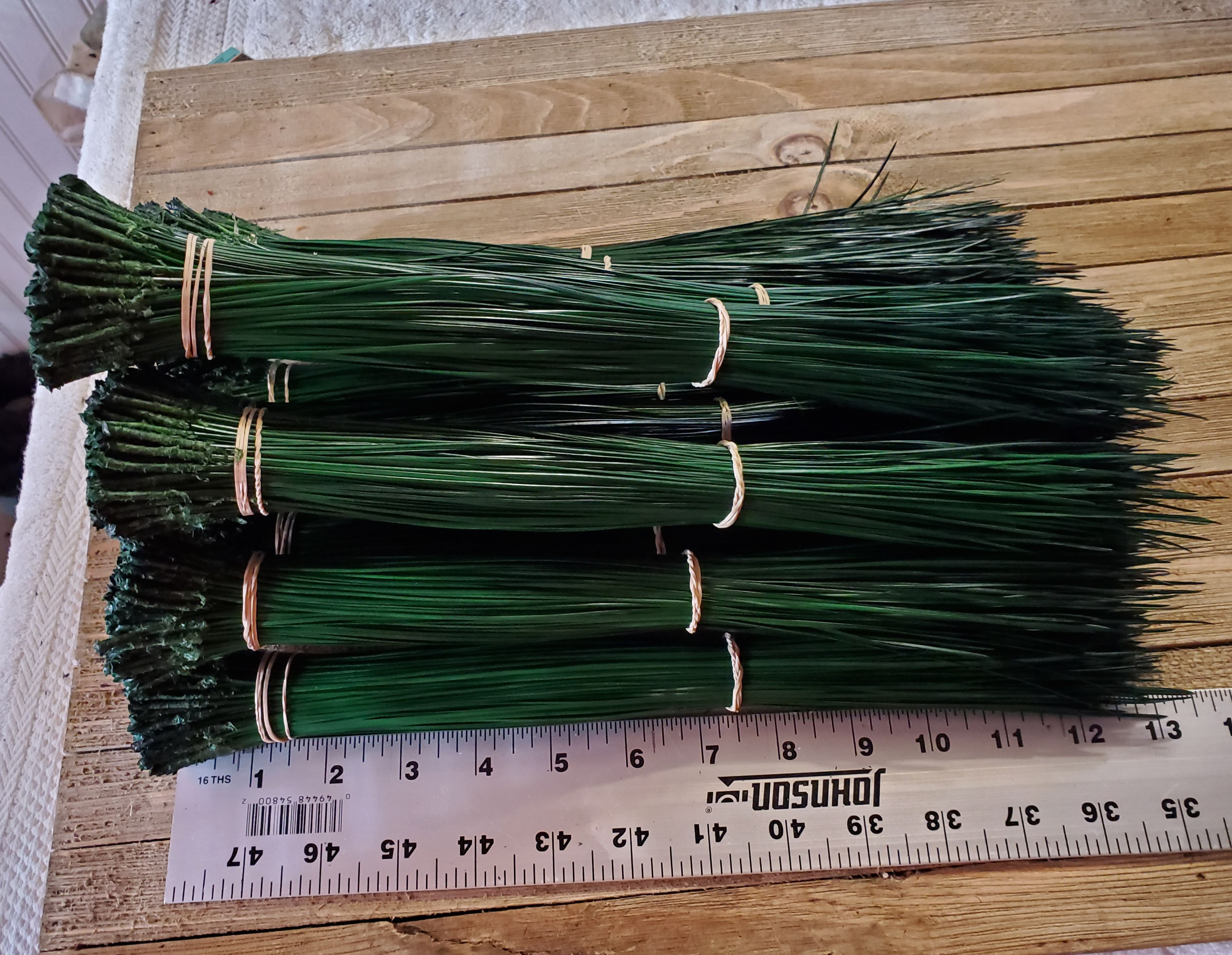 Pine Needle Green