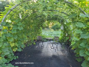 Gourd hoop frame and table