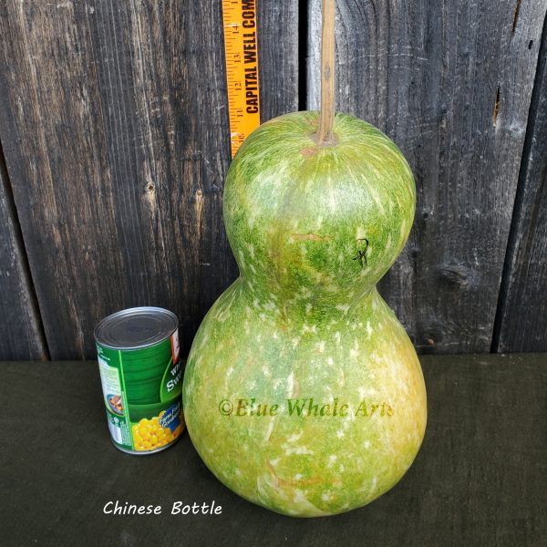 Chinese Bottle Gourd Seeds